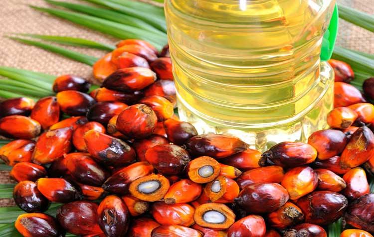 minyak sawit Malaysia