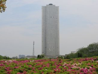 Bangunan 57 Tingkat 19 Hari