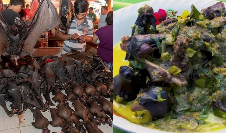 Penularan wabak Daging Kelawar Koronavirus Indonesia 2