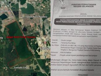 Hutan Simpan Kuala Langat Utara Bakal Dimansuhkan 4