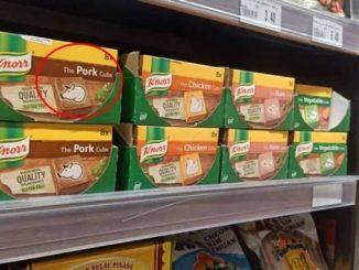 Tular Gambar Pati Kiub Knorr Perasa Pork Babi