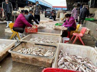 Pasar Basah Wuhan Berdepan Krisis, Pengunjung Sudah Tidak Seramai Dahulu 1