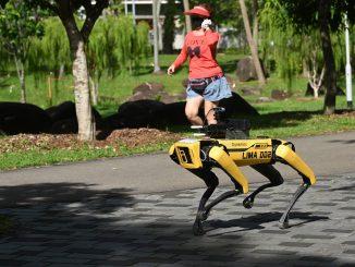 Robot Anjing 'Bersiar' Di Taman Pantau Jarak Sosial Rakyat Singapura 1