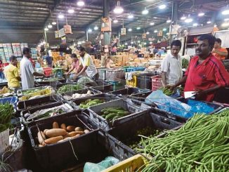 Pekerja Pasar Borong Diperlukan