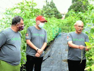 AirAsia Ceburi Bidang Perniagaan Baharu Berasaskan Pertanian Dalam Talian 1