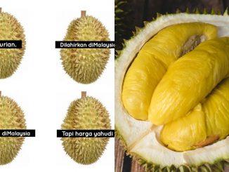 Ini Sebab Mengapa Harga Durian King Terlalu Yahudi Meskipun 'Lahir Dan Membesar' Di Malaysia 3