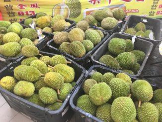 Pemilik Dusun Pegang Gelaran OKB Mampu Raih Pendapatan Hingga RM200,000 Hasil Daripada Jualan Durian