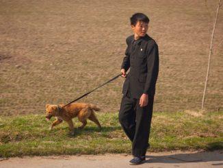 Kim Jong-un Paksa Rakyat Korea Utara Serah Anjing Peliharaan Bagi Atasi Masalah Kekurangan Bekalan Makanan 1