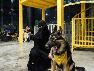Kafe Anjing Pertama Arab Saudi
