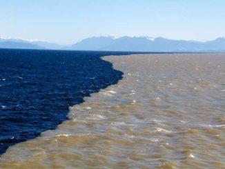 Kisah Dua Lautan Yang Bertemu Tapi Tak Pernah Menyatu 2