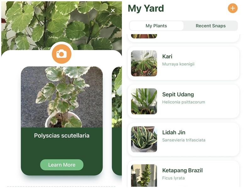 Aplikasi Nature ID Tanam Pokok