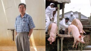 Hero Yang Merungkai Misteri Penyakit Nipah Di Malaysia 6