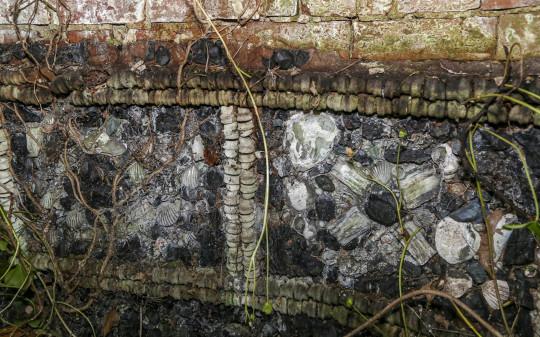 Lelaki Terkejut Temui Bangunan Abad Ke-18 Yang Diperbuat Daripada Gigi Di Rumahnya 2