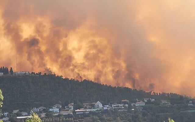 Kebakaran Hutan Israel Minta Bantuan